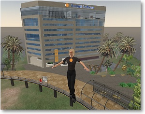 Sunbelt Software Building in Second Life